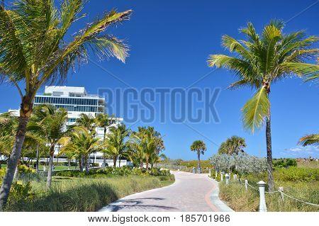 Miami Beach promenade along the beach. Palm trees