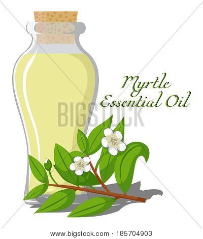 Bottle with essential oil of Myrtle with a flowering branch on the background