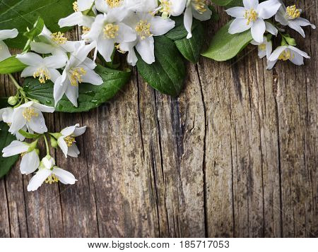 Beautiful jasmine flower on rustic wooden table