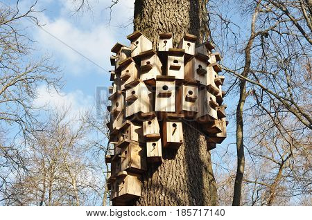 How to Mount a Birdhouse on a Tree. Attach a Birdhouse to a Tree Without Damage. Tree-Friendly Bird House Mounting.