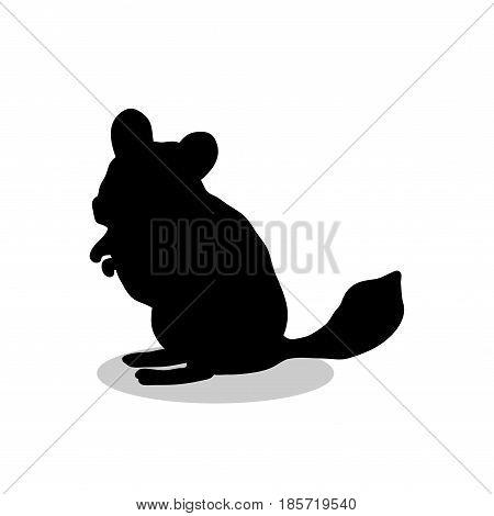 Chinchilla pet rodent black silhouette animal. Vector Illustrator.
