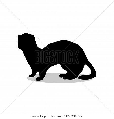 Ferret weasel ermine mammal black silhouette animal. Vector Illustrator.