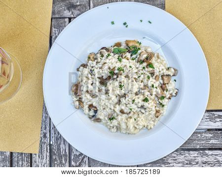 risotto with mushrooms on a white plate in a restaurant