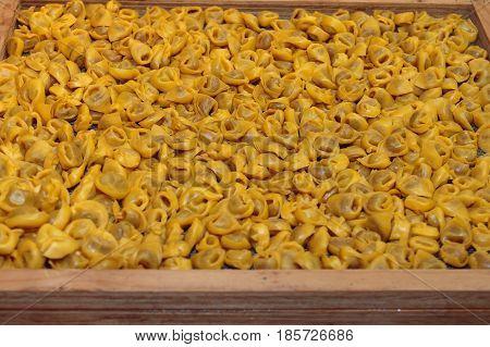 Uncooked Tortellini Italian Pasta In Wooden Box