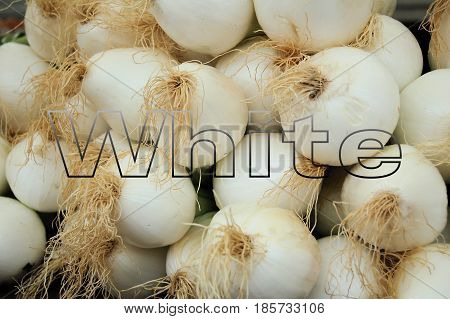 See through word white on white onions