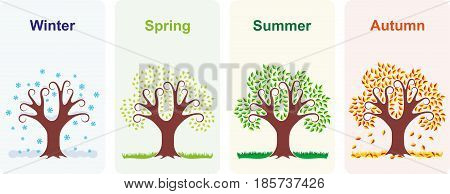 Vector illustration of a tree in four seasons winter, spring, summer and autumn