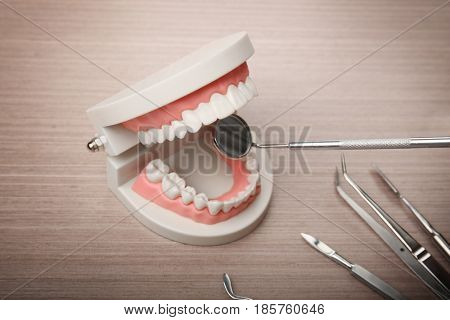 Dentist examining teeth model with tools on wooden background