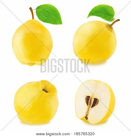 Set of different quinces isolated on a white