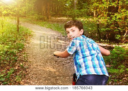 Teen Boy On Bicycle Ride Through The Summer Forest