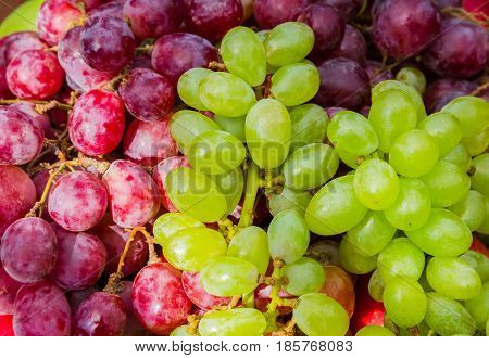Red and green ripe grapes close up fruit background selective focus