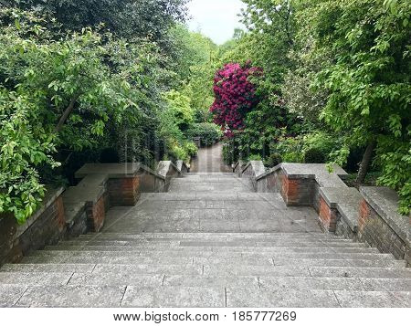 Verdant hillside garden stone steps
