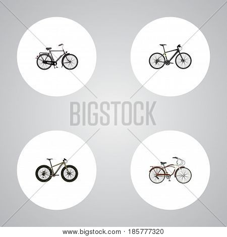 Realistic Training Vehicle, Hybrid Velocipede, Journey Bike And Other Vector Elements. Set Of Lifestyle Realistic Symbols Also Includes Training, Extreme, Cruise Objects.