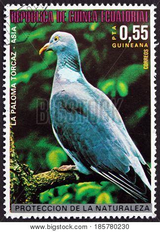 EQUATORIAL GUINEA - CIRCA 1976: a stamp printed in Equatorial Guinea shows Wood Pigeon Columba Palumbus Asian Bird circa 1976