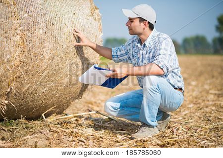 Farmer checking a hay bale quality in his field