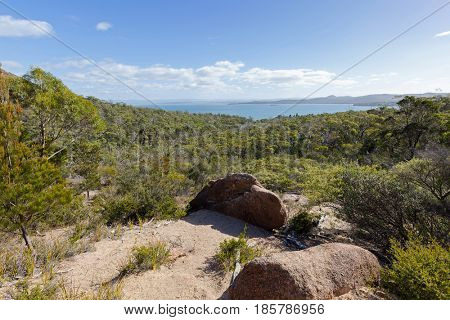 Rocky path and vegetation along path track up to Wineglass Bay lookout, View of Coles Bay, Tasmania's famous east coast in Freycinet National Park, Tasmania island, Australia