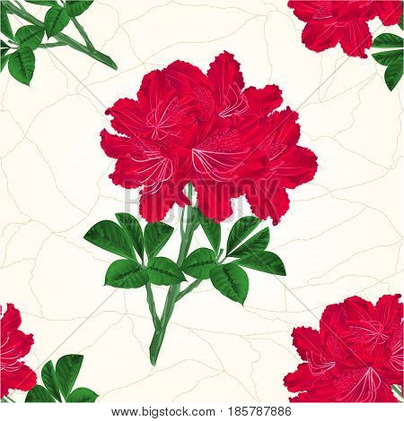 Seamless texture flowers red rhododendrons twig Mountain shrub cracks in the porcelain vintage hand draw vector illustration