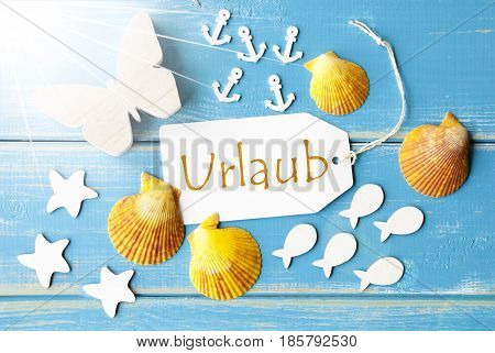 Flat Lay View Of Label With German Text Urlaub Means Holiday. Sunny Summer Greeting Card. Butterfly, Shells And Fishes On Blue Wooden Background
