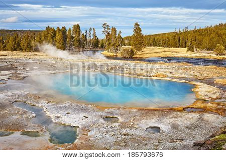 Steaming Hot Spring In Yellowstone National Park, Wyoming, Usa