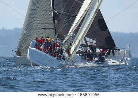 Sailboats crossing tacks in race on Puget Sound WA