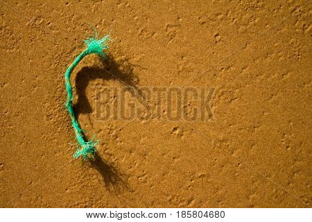 Piece of discarded rope on the beach