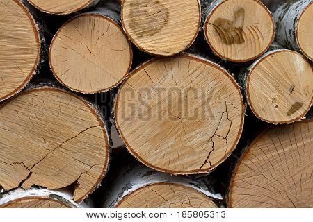 birch logs are stacked in a pile of bricks. background