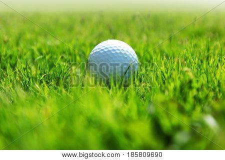 golf-ball on green grass of golf course