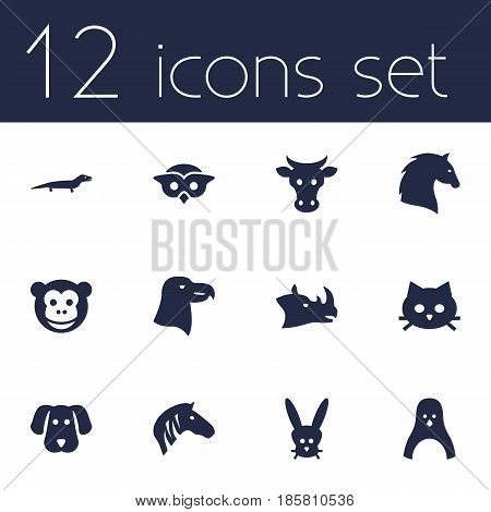 Set Of 12 Alive Icons Set.Collection Of Kine, Night Fowl, Horse And Other Elements.