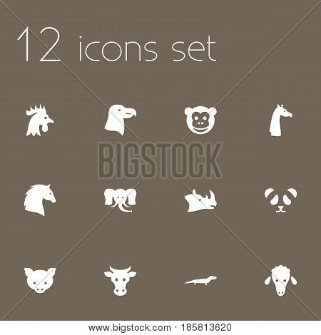 Set Of 12 Alive Icons Set.Collection Of Steed, Ape, Gecko And Other Elements.