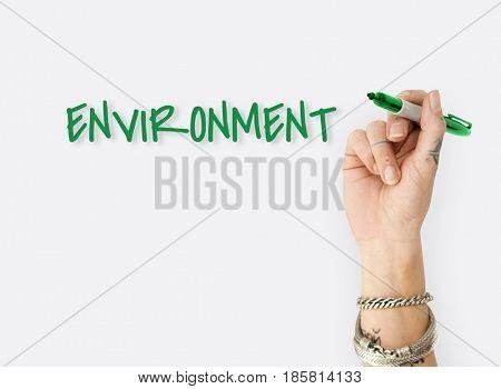 Environmental Friendly Responsibility Nature Word