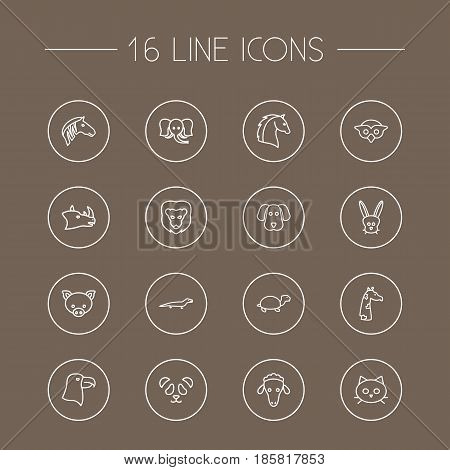 Set Of 16 Brute Outline Icons Set.Collection Of Rhino, Mammal, Elephant And Other Elements.