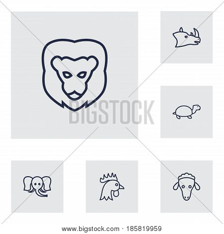 Set Of 6 Brute Outline Icons Set.Collection Of Lion, Rhino, Sheep And Other Elements.