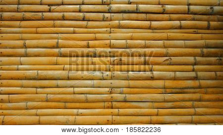 Background dried bamboo trunks / bamboo wall
