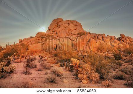 Arizona desert landscape with sun setting