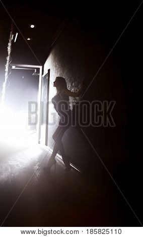 Silhouette of elegant lady standing in the dark interior