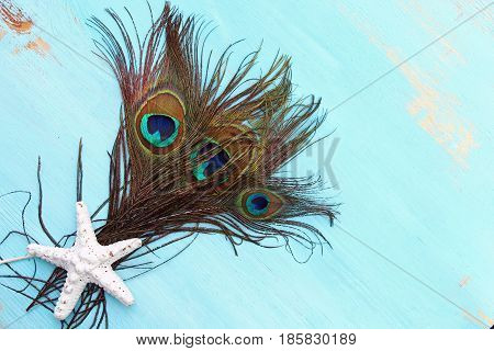Peacock feathers on a wooden blue background with copy space
