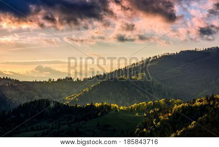 mountain landscape on cloudy evening. green meadow near the forest on the hillside in Carpathians