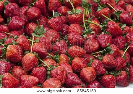 Strawberry (Fragaria ananassa): A large bunch of strawberries