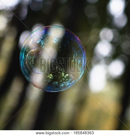 A beautiful soap bubble with reflections and overflows. Close-up.