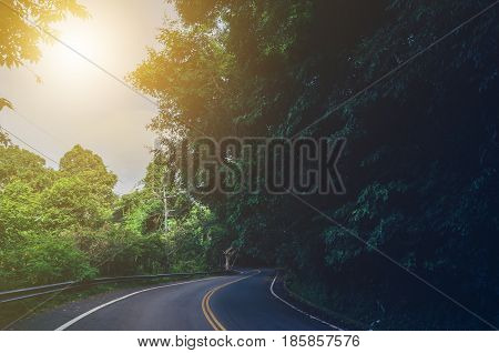 Travel on the road with trees on the street and the sun.