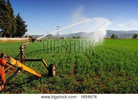 Crops Sprinkler