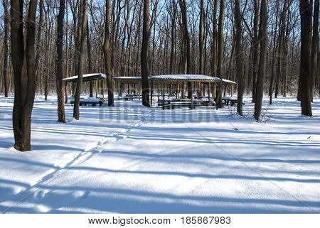 benches and a roof for the recreation in the winter woods