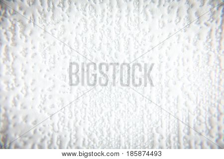 Background texture. White grey rough surface back