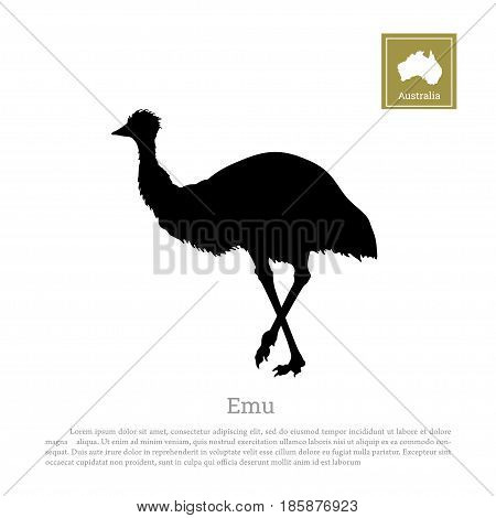 Black silhouette of ostrich emu on white background. Animal of Australia. Vector illustration