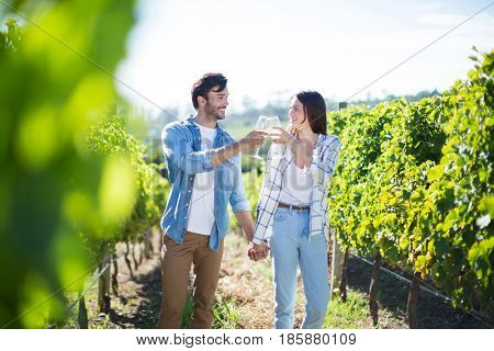 Couple with holding hands toasting wineglasses while standing at vineyard