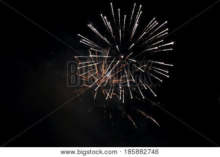 Beautiful fireworks blossomed in the form of fluffy lustrous flower bright lights dark clear sky
