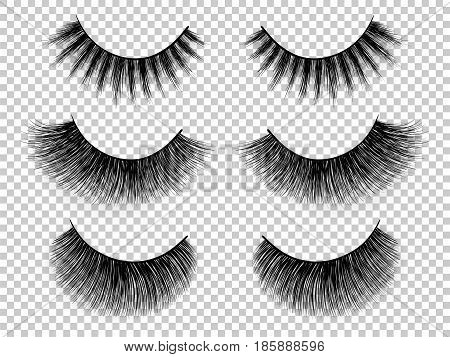Lashes set. False eyelashes collection. Woman beauty product vector. Hand drawn female eyelashes. Trendy fashion illustration for mascara pack or beauty products design.
