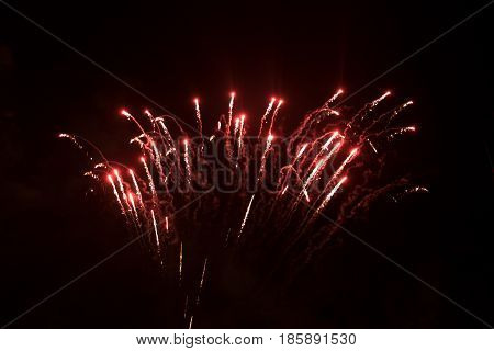 Amazing Colorful Fireworks On A Night Sky Background