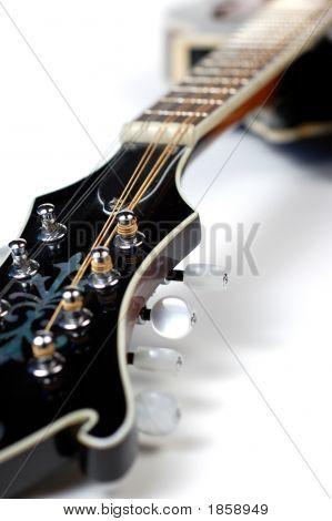 Mandolin On White