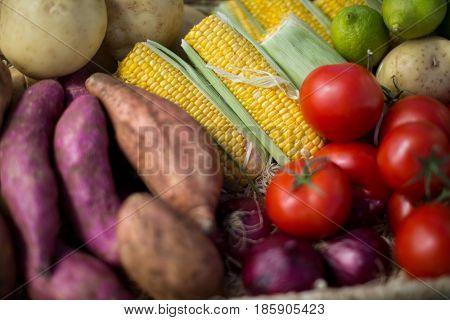 Full frame shot of vegetables at farm