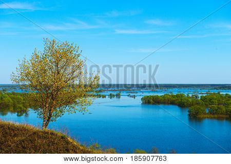 Beautiful spring landscape. Amazing view of the floods from the hill. Europe. Ukraine. Impressive blue sky with white clouds. A little tree on the hill